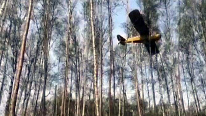 Samolot zawisł na czubkach drzew