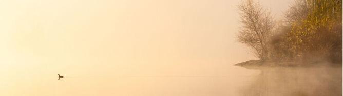 Pasma mgieł ciągną się na przestrzeni tysięcy kilometrów. Skąd się biorą?