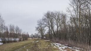 Nowe pory roku w Polsce. Mechanizm zmiany wyjaśnia fizyk atmosfery