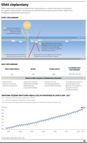 Efekt cieplarniany (PAP/Maria Samczuk)