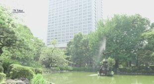 Tokio zmaga się z upałami
